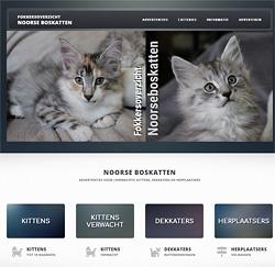 De nieuwe website van fokkersnoorseboskatten.info